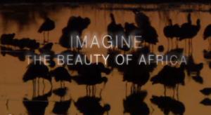 Imagine the Beauty of Africa